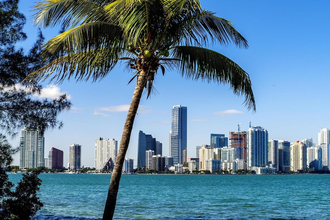 Date Night in Miami