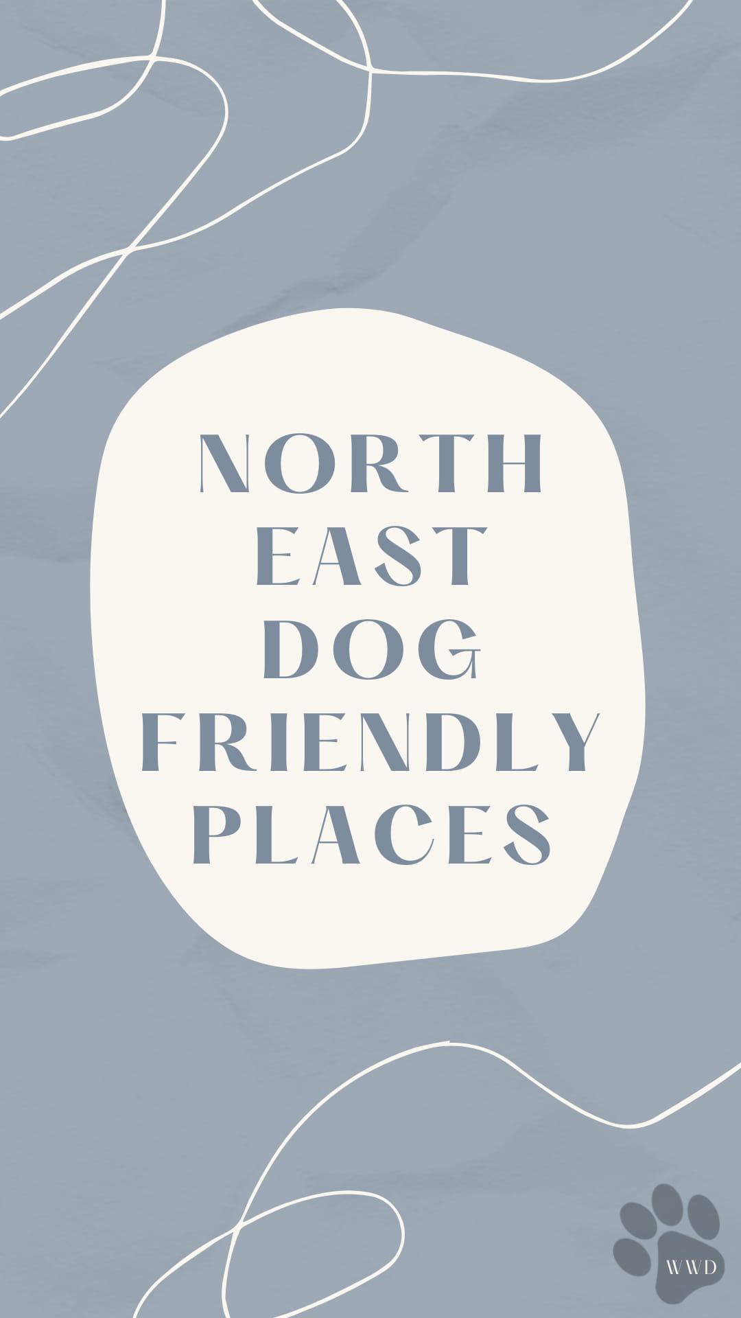 Dog Friendly North East www.ladyfromatramp.co.uk